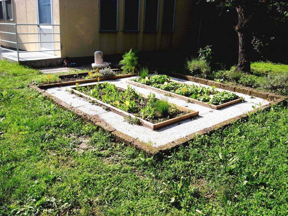 Il giardino incantato premia ricoh impresa responsabile - L orto in giardino ...