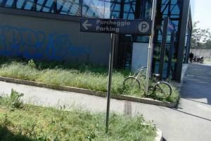 Curioso modo di parcheggiare l'auto