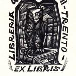 Libreria G. B. Monauni, X2, mm 84x62, 1952