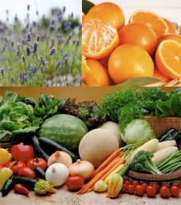 Le tinte naturali di Maekò sono ottenute solo da fiori, frutta e verdura