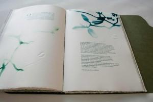 A. Angelini Il Giardino è aperto, libro d'artista, 2015