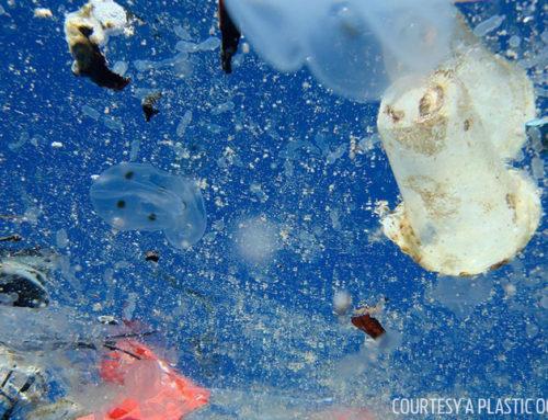 Strategia europea sulla plastica