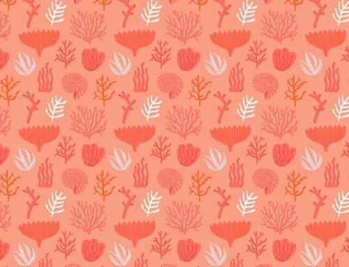 Living Coral è il colore Pantone 2019
