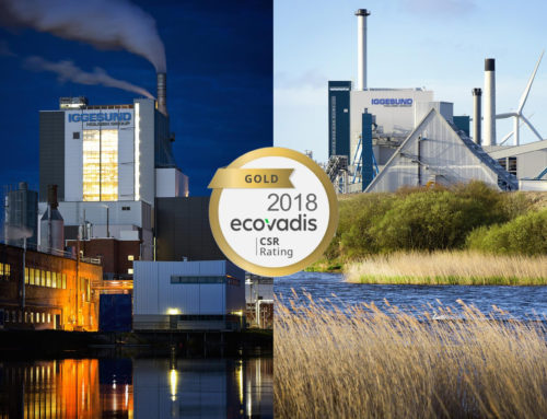 Cartiere Iggesund Paperboard promosse nella sostenibilità