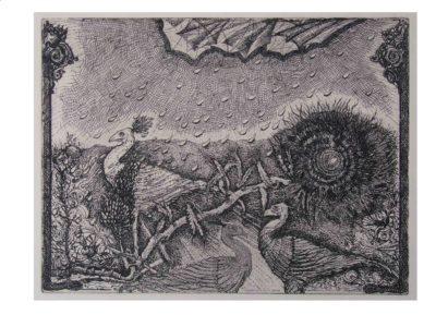 Il giardino del pavone di Carlo Iacomucci - acquaforte