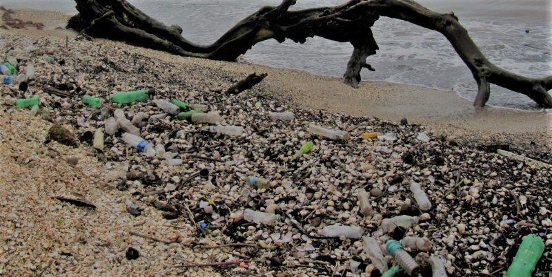 Italia esempio nella lotta ai rifiuti di plastica