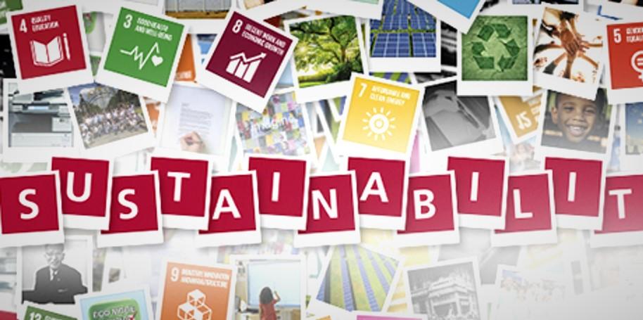 Aziende e sostenibilità: tre aspetti da considerare