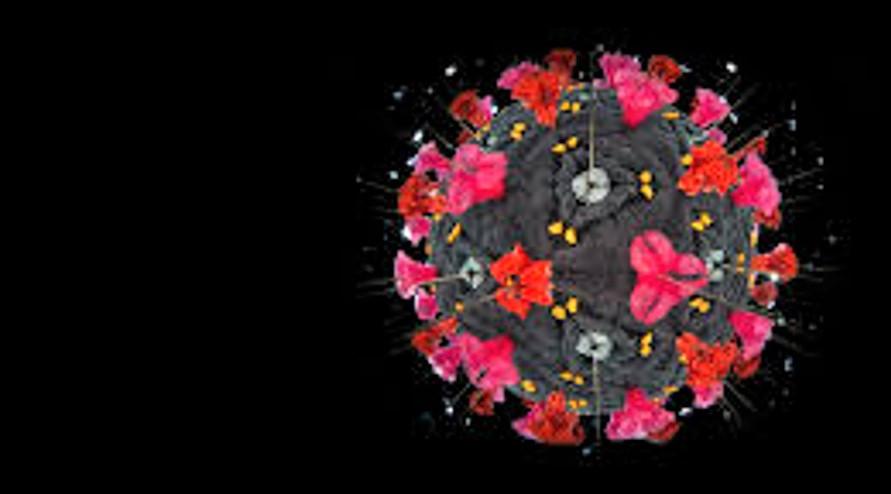 Coronavirus: occorre comunicare verità