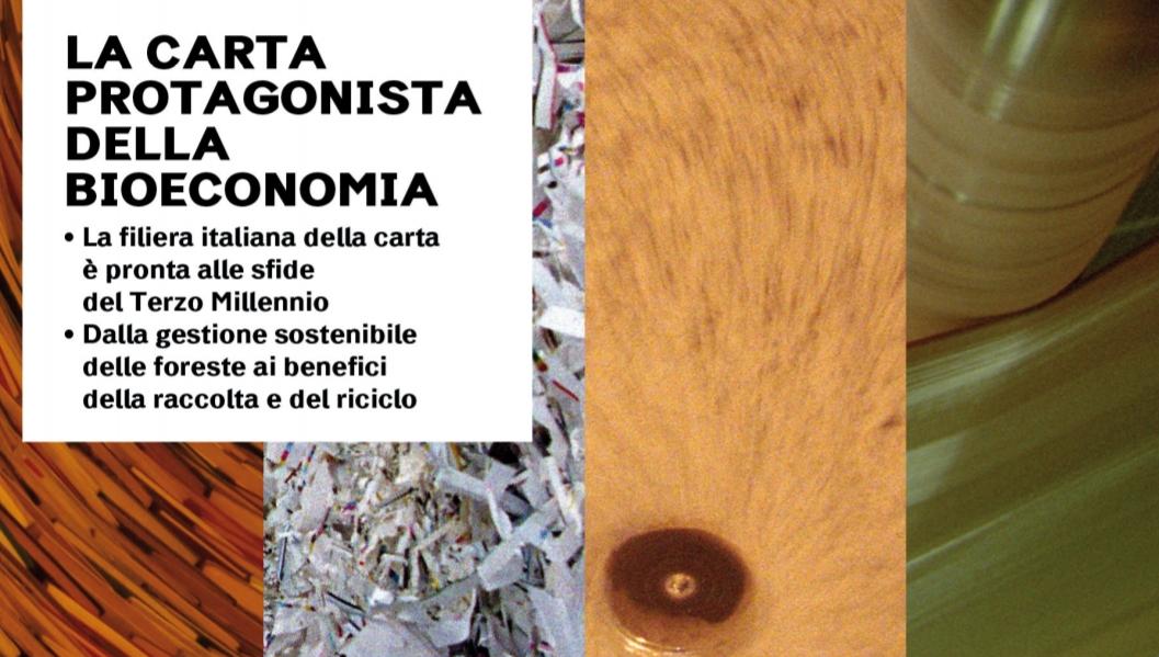 Carta e riciclo: un ecosistema sostenibile